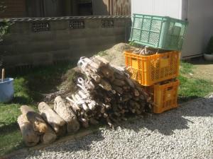 流木から乾燥した薪を作る方法と自作の薪置き場