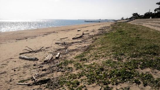 海に落ちている流木を薪ストーブの燃料にする
