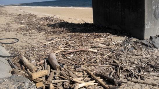 海に落ちている流木を拾ってきて薪ストーブで燃やす