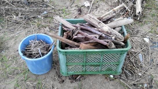 10分ぐらいで薪の代わりの流木がこんなに集まりました